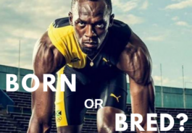 FITNESS CAPACITY – BORN OR BRED?